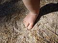 Baby Foot on Granite.JPG