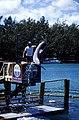 Bahamas 1988 (287) Paradise Island Paradise Lake (24070031951).jpg