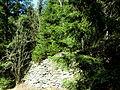 Bahndamm Stützwand aus Natursteintrockenmauerwerk.km 59.JPG