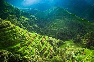 Banaue - Stairways to Heaven.jpg