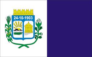 Patos - Image: Bandeira patos