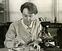 Barbara McClintock (1902-1992) shown in her laboratory in 1947.jpg