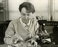 Barbara McClintock i sitt laboratorium 1947.