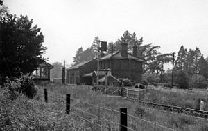 Bealings railway station - The station in 1963