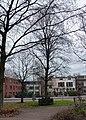 Beatrixboom in Gouda.jpg