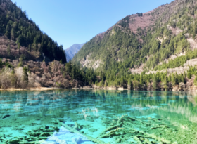 Beauty of Jiuzhaigou National Park - Apr 2017.png