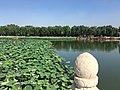 Beihai Park IMG 4403 Beihai Lake.jpg