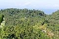 Bela sulawesi barat - panoramio.jpg