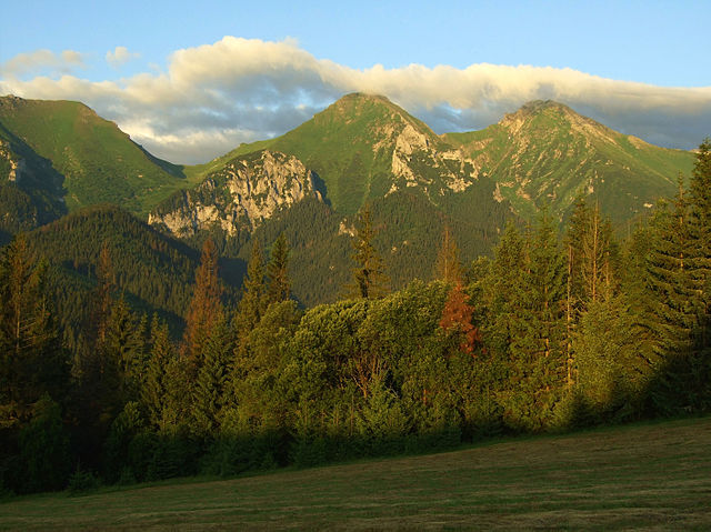 Prírodné spoločenstvo (Belianske Tatry)