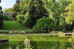 Belvoirpark 2011-08-29 17-43-22.jpg