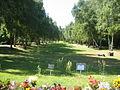 Berlin-Gatow Landschaftsfriedhof anonyme Beerdigungsfläche.JPG