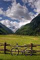 Bicicletta (2907539178).jpg