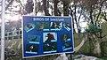 Birds of Sakesar.jpg