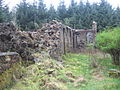Birnock Ruin - geograph.org.uk - 409863.jpg