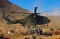 BlackAlligator Final Exercise Helicopter Insertion MOD 45155819.jpg