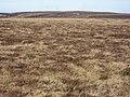 Blackway Head - geograph.org.uk - 391066.jpg
