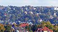 Blick auf Dresden (85).JPG