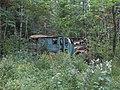Blue Bus - panoramio.jpg