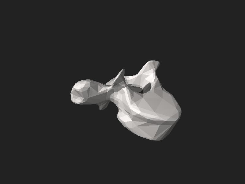 File:BodyParts3D FJ3163 Third thoracic vertebra.stl
