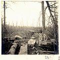 Bois de Beaumarais - Fonds Berthelé - 49Fi1879-23.jpg