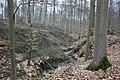 Bois de la Louvière - Livierenbos, Flobecq - Vloesberg 02.jpg