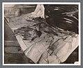 Boldini - Natura morta con pernici, 1909.jpg