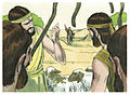 Book of Genesis Chapter 37-12 (Bible Illustrations by Sweet Media).jpg