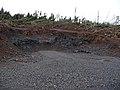 Borrow pit in Coille Ghlinne Bhig - geograph.org.uk - 1117292.jpg