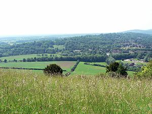 Surrey - Box Hill