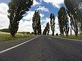 Braidwood NSW 2622, Australia - panoramio (58).jpg
