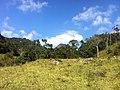 Brasil Rural - panoramio (12).jpg