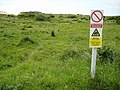 Braunton Burrows - geograph.org.uk - 1399435.jpg