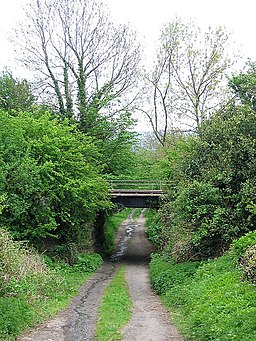 Bridge carrying Wensley Railway Line over Low Wood Lane - geograph.org.uk - 807033