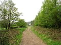 Bridleway - Woodhall Road - geograph.org.uk - 789180.jpg