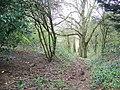 Bridleway near Rockbourne - geograph.org.uk - 739530.jpg