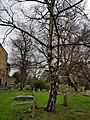 Brompton Cemetery – 20180204 130919 (28387410999).jpg