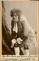 Bror Olsson, rollporträtt - SMV - H6 156.tif