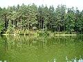 Brzeg j.Mikaszewo - panoramio.jpg