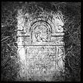 Brzeziny-Cmentarz Żydowski-008.JPG