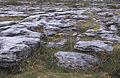 Burren06(js).jpg