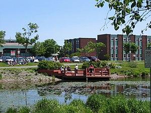 Memorial University of Newfoundland - Burton's Pond apartments
