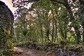 Buxan - panoramio (2).jpg