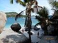 COCOS ISLAND 2015 - panoramio (7).jpg