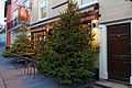 Café Christmas tree Thaxted Essex England 1.jpg