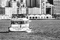 Cais do Porto 1.tif