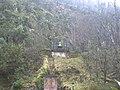 Campana - panoramio - M. PIZARRO CH..jpg