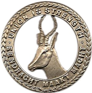 1st Infantry Brigade (South Africa) - Cap badge of 1st SA Infantry Brigade, 1914