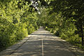 Carmel - Monon Trail.jpg
