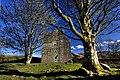 Carnasserie Castle (1) - geograph.org.uk - 1704048.jpg