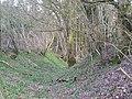 Castell Gwynionydd - geograph.org.uk - 756715.jpg